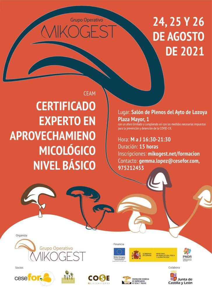 Cartel curso micológico